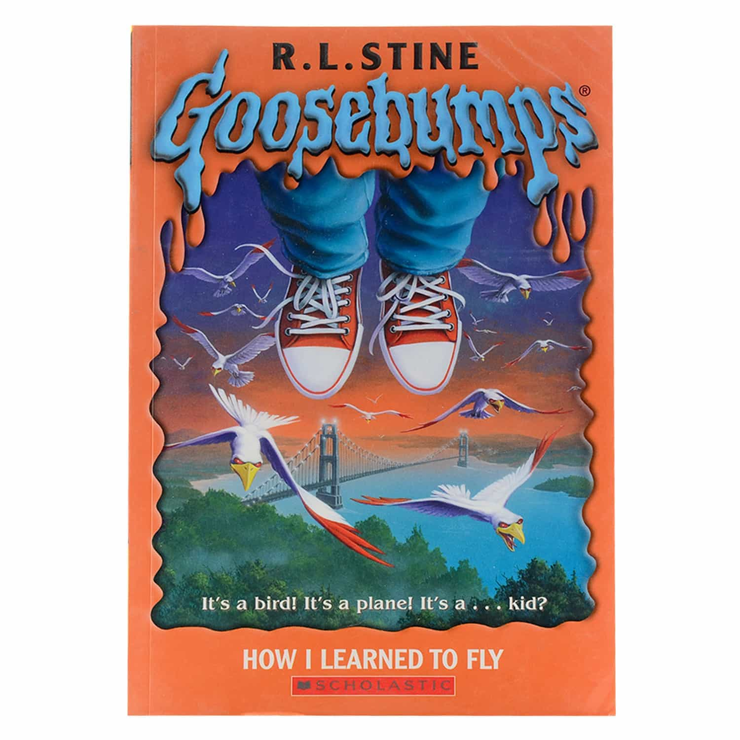Goosebumps Horrorland Series -  How I Learned To Fly