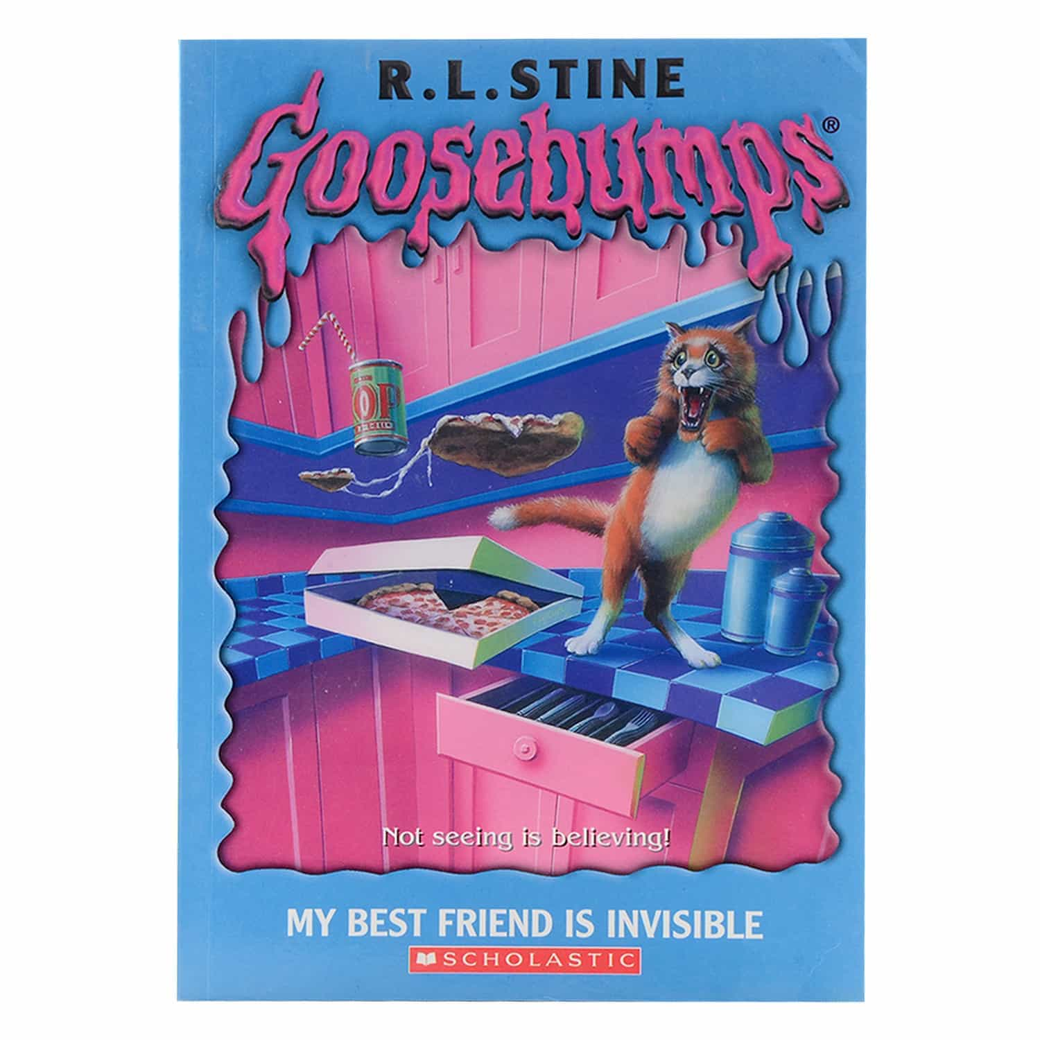 Goosebumps Horrorland Series -  My Best Friend is Invisible